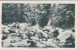 /97/ Rivière D´Absalon/ Réf:C4662 - Martinique