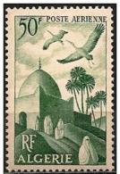 Algeria/Algerie: Marabutto, Marabout - Islam
