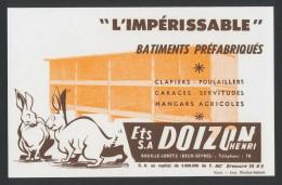 Buvard - SA DOIZON - Imperissable - D