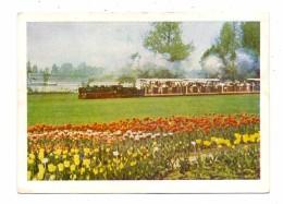 "5000 KÖLN - DEUTZ, Bundesgartenschau 1957, Liliputbahn ""Fleißig Lies´chen"", Rücks. Kl. Klebereste - Koeln"