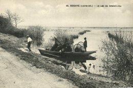 44  BOUAYE  - Le Lac De Grand Lieu - Bouaye