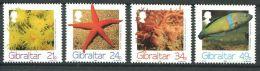175 GIBRALTAR 1994 - Yvert 704/07 - Faune Marine Poisson Corail - Neuf ** (MNH) Sans Charniere - Gibraltar