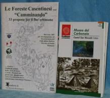 B  292/58  LIBRETTI 2 LE FORESTE DEL CASENTINO MUSEO DEL CARBONAIO CASTEL SAN NICCOLO´ CETICA - Arezzo