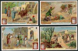 Liebig Set Of 6 Cards -  Das Trinkwasser - Liebig