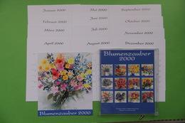 Blumenzauber / Kalender-Karten - Kurioses - Ewiger Schaltjahrkalender ... - Ohne Zuordnung