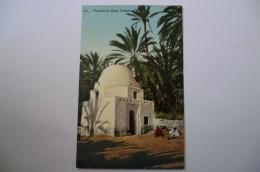 CPA TUNISIE TUNIS LEHNERT ET LANDROCK. Un Marabout Dans L Oasis. - Tunisie