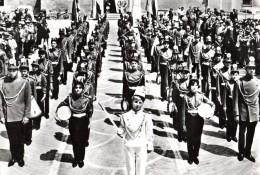 342  SAVIGNANO AL RUBICONE  - FORLI´   FG  VIAGGIATA 19.7.1966  RARA - Forli