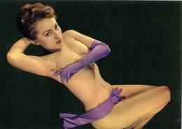PIN-UP   Vintage  Ragazza Nuda In Posa Sexi Con Guanti - Pin-Ups