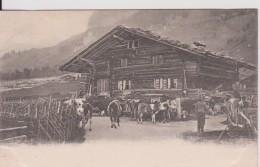 """SUISSE Autre Non Classée  """" A Swiss Farm """" Precurseur - Suiza"""