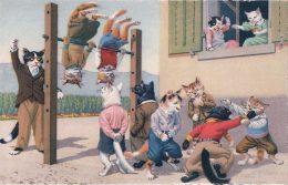Chats Habillés Künzli, Gymnastique (4671) - Cats