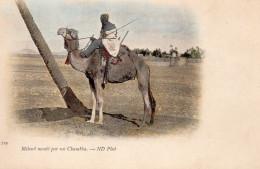 7950. CPA ALGERIE. MEHARI MONTE PAR UN CHAMBBA - Scènes & Types