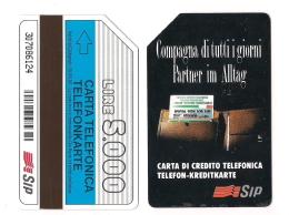 SCHEDA TELEFONICA USATA BILINGUE Compagna Di Tutti I Giorni AA24 -  AV1 - Italien