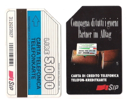 SCHEDA TELEFONICA USATA BILINGUE Compagna Di Tutti I Giorni AA29 -  AV1 - Italien