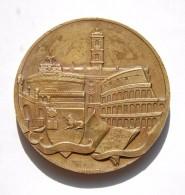 Large Medal Ordine Dei Dottori Commercialisti Di Roma - Professionnels/De Société