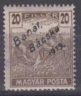 Hungary Banat Bacska 1919 Mi#40 Mint Hinged - Banat-Bacska