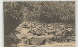 CPA  GUADELOUPE - La Rivière Noire   C241 - Pointe A Pitre