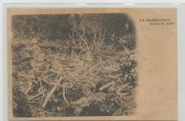 CPA   LA GUADELOUPE - Sources Du Galion    C241 - Autres