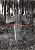 1968 Stenen Kruis Zutendaal Papendaal - Zutendaal