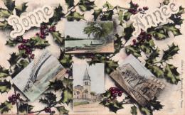 ST RAMBERT D'ALBON BONNE ANNEE MULTIVUES - Autres Communes