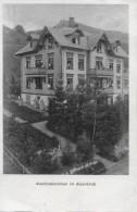 NESSLAU → Abschiedswinken Im Alpenblick Anno 1912 - SG St. Gallen