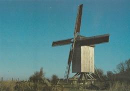 CPM Coquelles Moulin De L'ingratitude - France