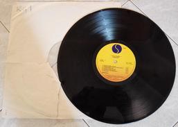 RAMONES LEAVE HOME 1977 Disco LP 33 Giri - Rock