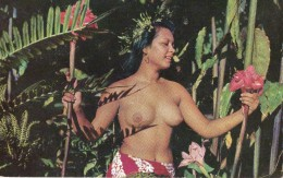 Beautifil Tahitian Maid - Polynésie Française