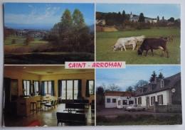 """65 : Saint-Arroman Par La Barthe De Neste - """"Le Biniou"""" Disco-dancing - Vaches - Multivue / Multi Vues - (n°6727) - France"""