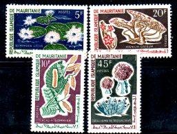 T291 - MAURITANIA , Serie Flora Del 1961  ***  MNH - Mauritania (1960-...)