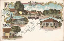 1895/1905 - Haringsee Im Marchweld, Gute Zustand, 2 Scan - Gänserndorf