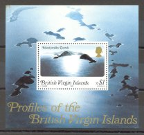 British Virgin Islands - 1980 Island Views Block MNH__(TH-17319) - British Virgin Islands