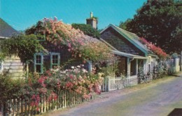 Massachsetts Nantucket Island Typical Rose Covered Cottages - Nantucket
