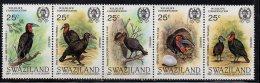 1985 Swaziland  Birds Hornbill Complete Set Of 5 MNH - Swaziland (1968-...)