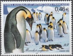 TAAF 2003 Yvert 360 Neuf ** Cote (2015) 5.50 Euro Manchot Empereur - Terres Australes Et Antarctiques Françaises (TAAF)