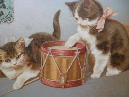 CPA Chat Musiciens Tambour  Un  Pli - Chats