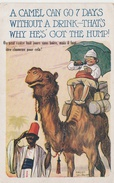 CP A Camel Can Go 7 Days Without A Drink That's Why He's Got The Hump ! - Fred Spurgin - Spurgin, Fred