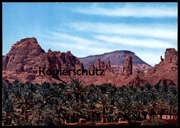 ÄLTERE POSTKARTE AL-ULA PALM GARDENS Saudi Arabia Ansichtskarte AK Cpa Postcard - Saudi-Arabien