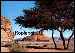 ÄLTERE POSTKARTE MADAIN SALEH NABATEAN TOMB Saudi Arabia Ansichtskarte AK Cpa Postcard - Saudi-Arabien