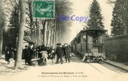 DONNEMARIE-en-MONTOIS (S.-et-M.) - La Halte Du Tramway De Nangis à Bray-sur-Seine - Otros Municipios
