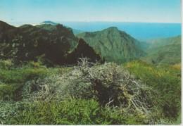 (CANA714) LA PALMA. PARQUE NACIONAL DE LA CALDERA DE TABURIENTE - La Palma