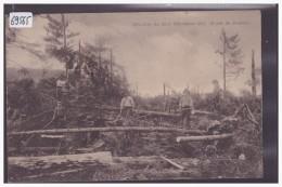 FORET DE BOUDRY - LA TORNADE DES 22-23 DECEMBRE 1911 - LES BÛCHERONS AU TRAVAIL - TB - NE Neuchatel