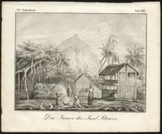 Pitcairn Islands ORIGINAL ENGRAVING ETCHING 1833 Karlsruher Unterhaltungs-Blatt - Books, Magazines, Comics