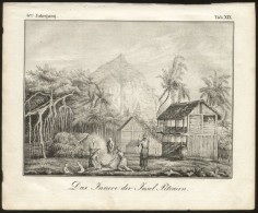 Pitcairn Islands ORIGINAL ENGRAVING ETCHING 1833 Karlsruher Unterhaltungs-Blatt - Grande Formato