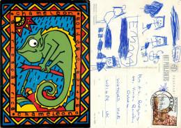 Chameleon, Botswana Postcard Posted 1995 Stamp - Botswana