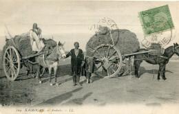 TUNISIE(KAIROUAN) ARABATS(ANE) - Tunesië