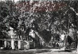 MALOU LES BAINS - L'avenue Carnot. - Unclassified
