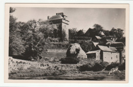 MONTROZIER - Le Château Et Les Rives De L'Aveyron - édit. FLOR, N°4521 - Format CPA - Francia