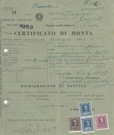 ** COMUNE DI CINIGIANO.-(GR).-MONTA ASININA.** - Italia