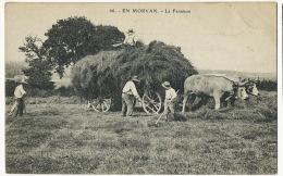 Attelage De Boeufs En Morvan La Fenaison - Attelages