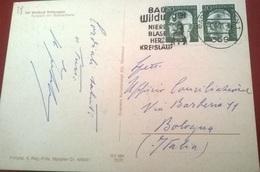 "TIMBRO POSTALE SU CARTOLINA ""BAD WILDUNGEN NIERE BLASE HERZ KREISLAUF 1971 GERMANIA"" - Timbri Generalità"